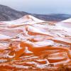 В пустыне Сахара чаще стал выпадать снег, а везде говорят о глобальном потеплении
