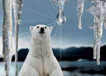 России пророчат превращение в рай после климатических изменений