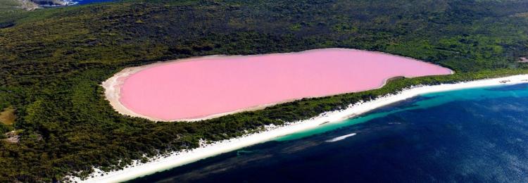 Розовые озера Австралии — причины такого цвета и можно ли в них купаться