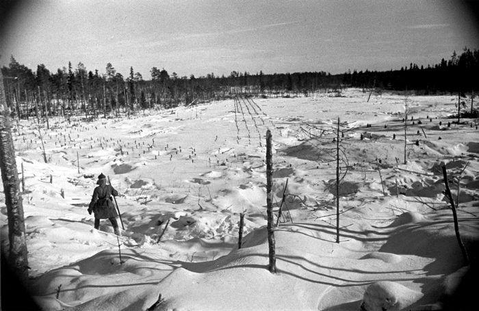 Минные поля на Карельском перешейке