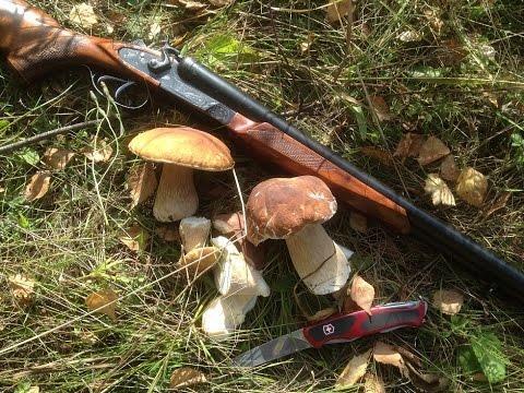 ТОЗ-54, грибы и нож