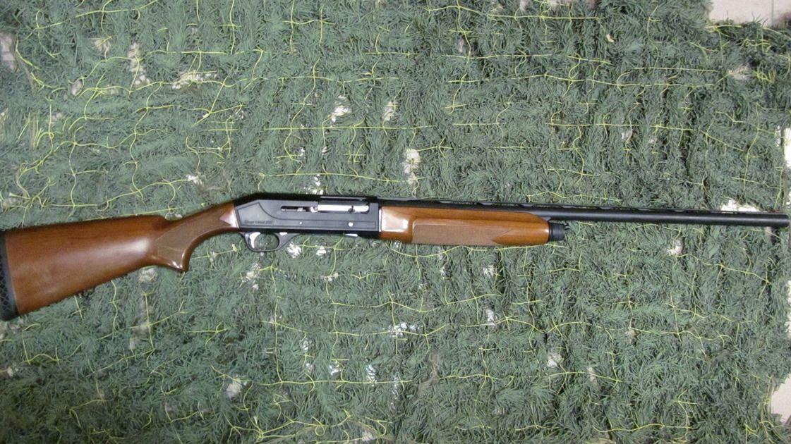 Охотничье ружьё Stoeger-2000