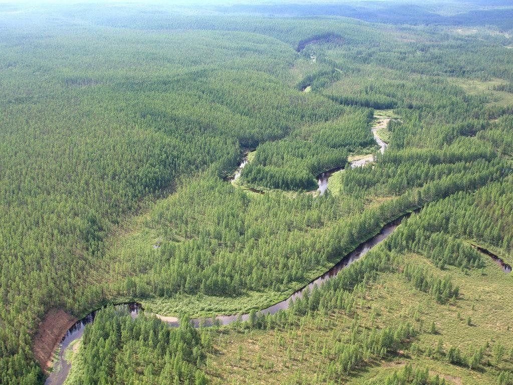 Река Подкаменная Тунгуска