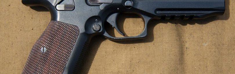 pistolet-lebedeva-pl-14